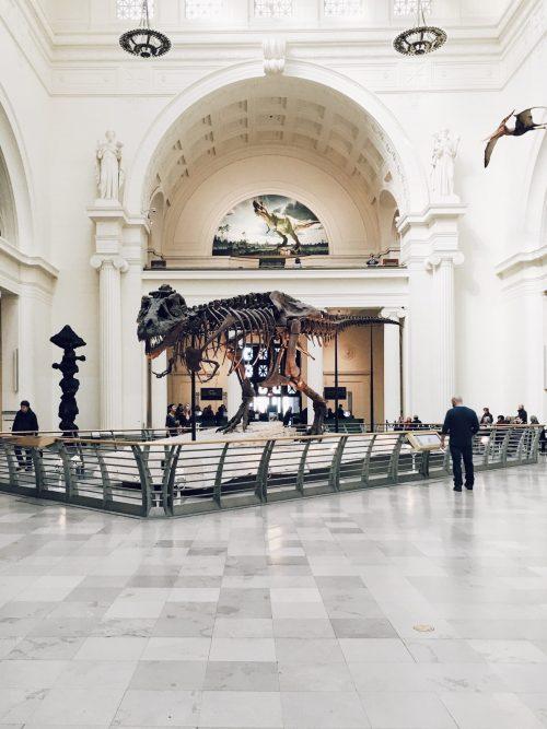 musée-du-monde-atypique-original