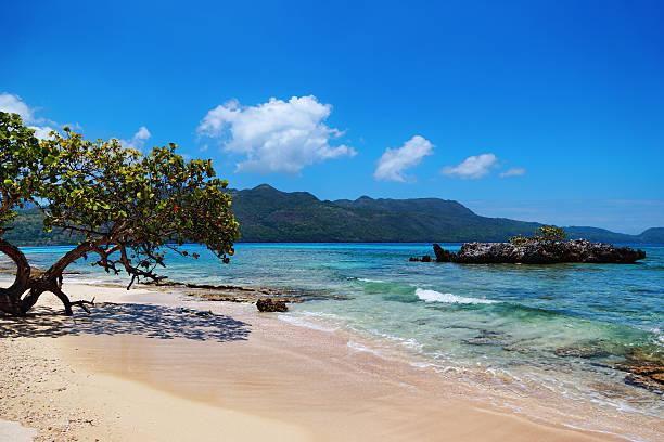 plage rincon republique dominicaine