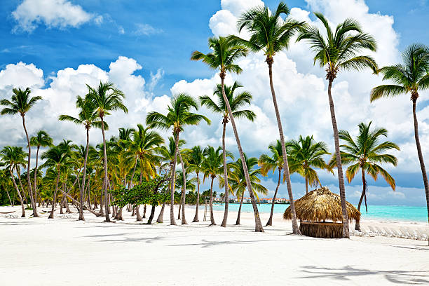 Beautifultop des plus belles plages de republique dominicaine day at Cap Cana seacoast