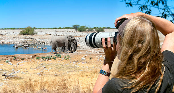 organiser safari afrique appareil photo sac prix